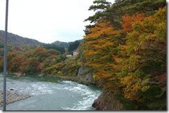 鷹の巣吊り橋付近の紅葉