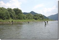 荒川でのウナワ漁実演