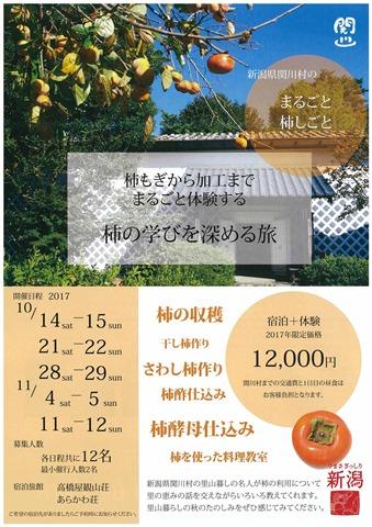 まるごと柿しごとチラシ(表)
